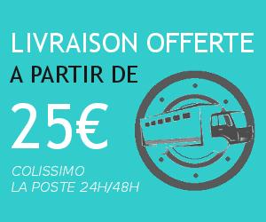 Briquet usb livraison gratuite a partir de 25€